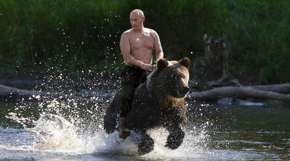 Symbolbild: Der lupenreine Demokrat Putin reitet in den Ferien auf Bären - das hält fit.