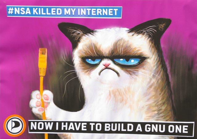 crumpy_pirate_cat
