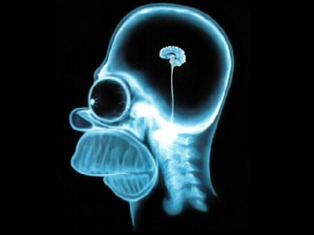 Das Gehirn eines Managers