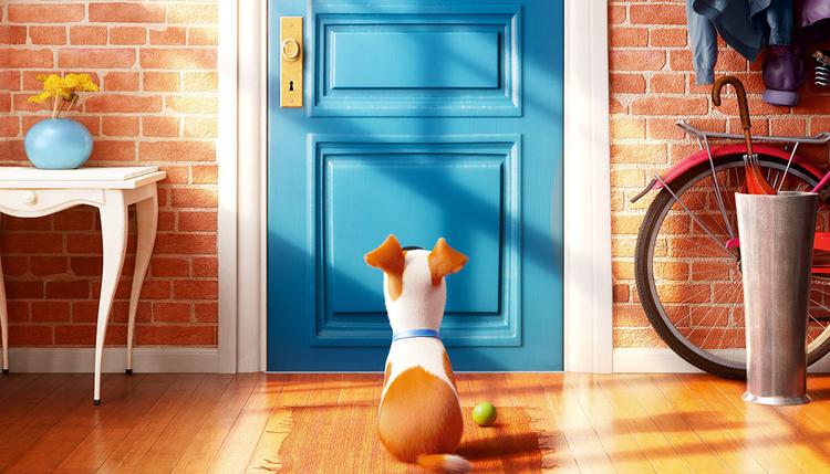 Film-Teaser: The Secret Life of Pets