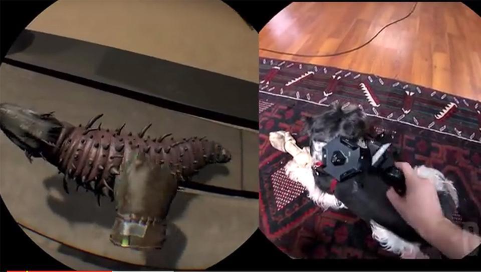 Haustier mit ins VR-Online-Spiel nehmen