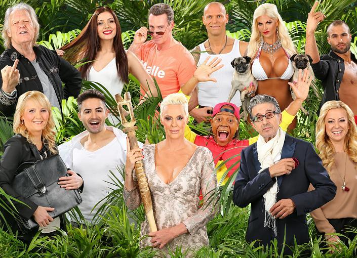 TV-Tipp: Dschungelcamp startet heute