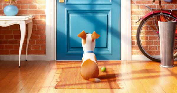 Das geheime Leben der Haustiere