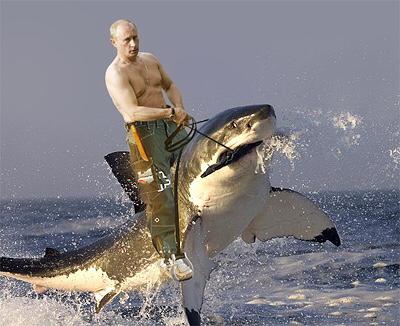Putin im Sommerurlaub ein Held