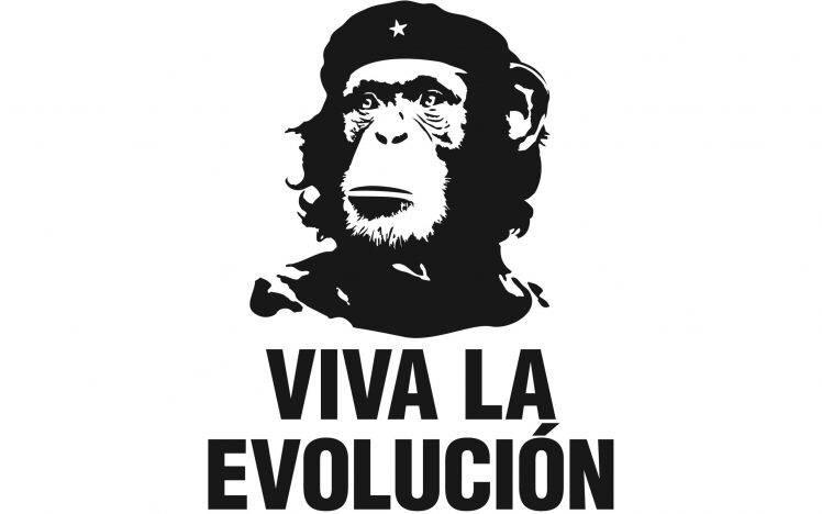 Evolutionsgegner geben nicht auf